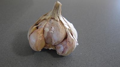 bulbe d'ail