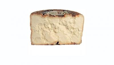 Photo : Fromage Castelmagno