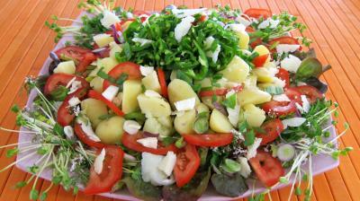 vinaigrette au gingembre : Assiette de piments doux en salade