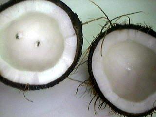 Punch à la noix de coco - 5.1