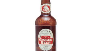 Image : Bière de gingembre (ginger beer) - Bière de gingembre