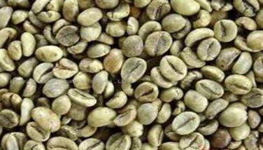 Image : Robusta - Café robusta