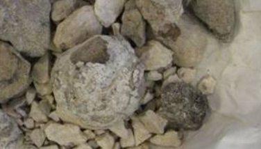 Image : Ambre gris - Ambre gris