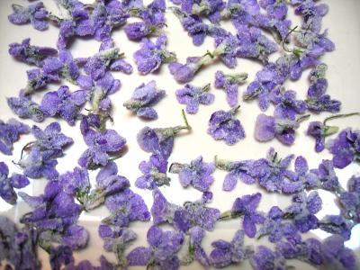 Recette Fleurs cristallisées