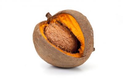 Image : Abricot-pays - Abricot-pays