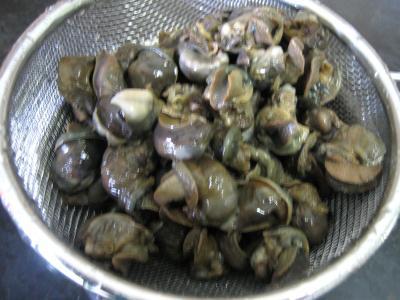 Escargots aux épinards - 5.2