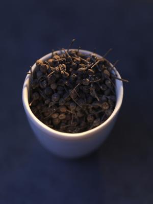 Photo : cubèbe ou poivre à queue