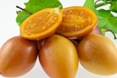 Image : Tomate de La Paz - Tomate de La Paz