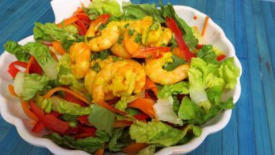 poivron rouge, vert, jaune : Saladier de gambas en salade
