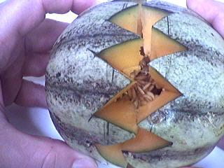 Agrandir peu à peu en faisant le tour du melon