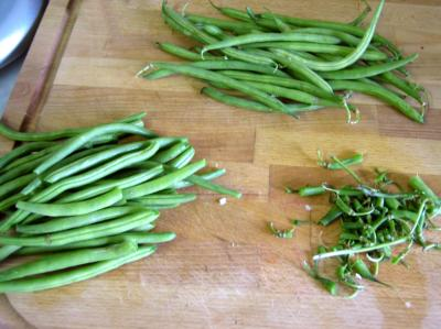haricots verts
