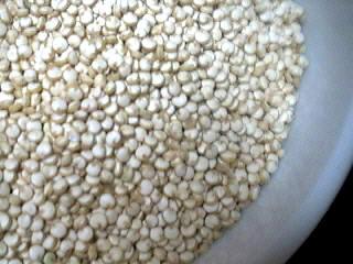Image : Quinoa - Graines de quinoa