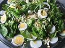 Violettes et primevères en salade - 4.2