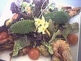 salade tiède de moules aux primevères