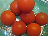 Tomates cerise
