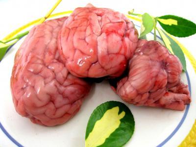 Image : Cervelle - Vue de cervelles entières