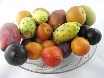 Image : Régime anticholestérol - Assiette de fruits frais