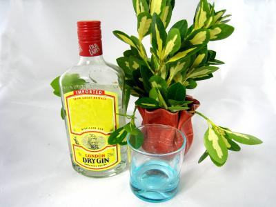 Photo : bouteille de gin
