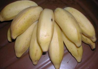 figue banane