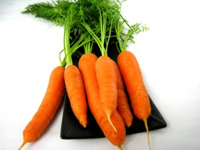 Photo : Des carottes