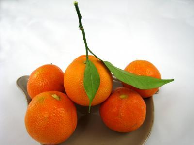 Image : Clémentine - Assiette de clémentines