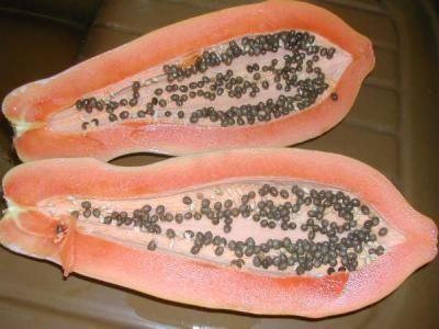 Image : Papaye - Papaye