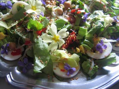 Photo : Violettes et primevères en salade
