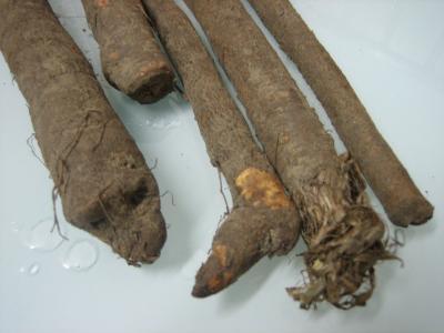 Photo : Scorsonères ou salsifis