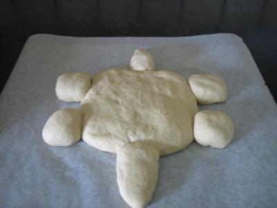 Pain aux oignons en forme de tortue - 11.2