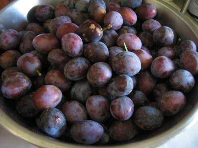 prunes avec pruines