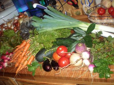 Image : Levure alimentaire - Légumes frais à cuire à la vapeur